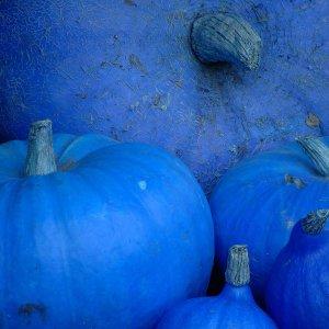 Orange - Bleu