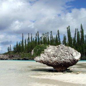 Piscine naturelle de la Baie d'Oro (à marée basse)